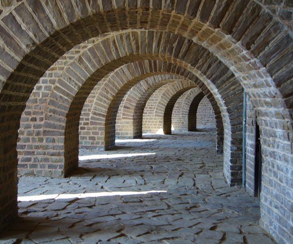 Pielea, zid de apărare sau poartă de intrare?